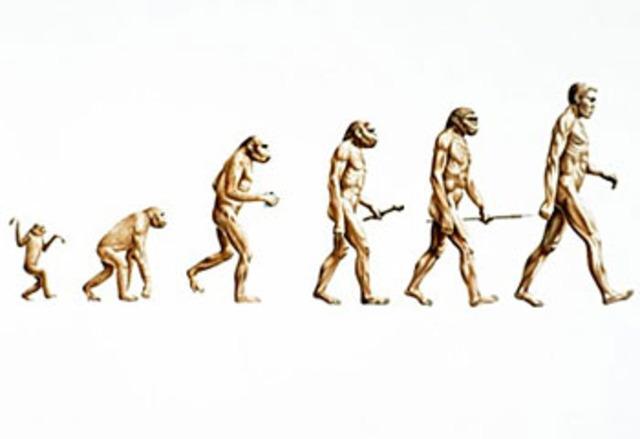 Θεωρία εξέλιξης Δαρβίνου