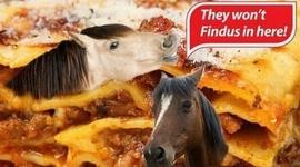 FINDUS, une affaire qui a du cheval timeline