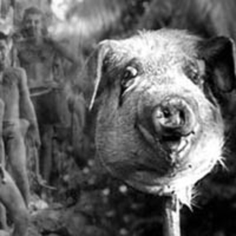 lord of the flies timeline timelines the pig speaks