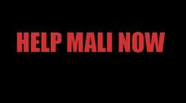 Help Mali Now timeline