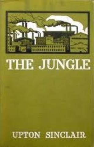 1 The Jungle
