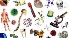 AVANCES EN LA BIOLOGIA timeline