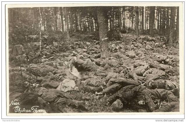 The Battle of Belleau  Wood