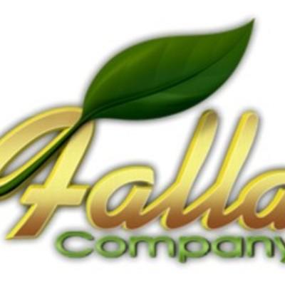 Falla Company History timeline