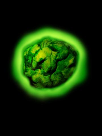 Radon is observed