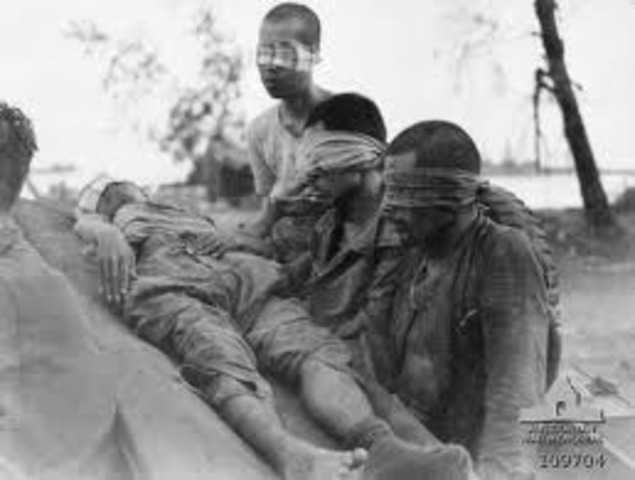 Australians captured Brunei
