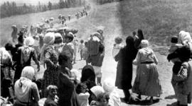 היווצרות בעיית הפליטים timeline
