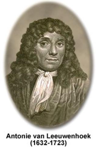 Anthony Leeuwenhoek