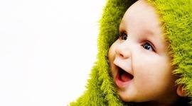 Fetal Development timeline