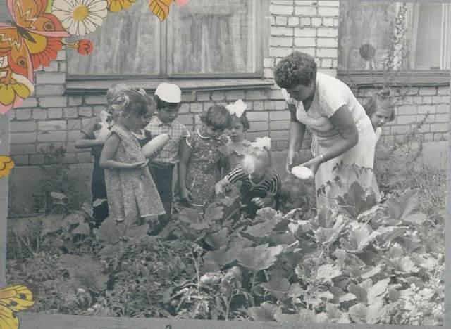 За активную творческую работу в воспитании детей коллектив в 1975 году награжден грамотой.