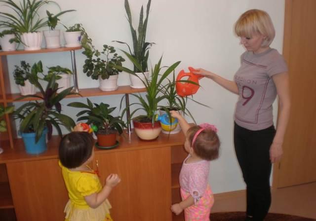 22 ноября 2012г. в ДОУ открыта группа для детей с 2 до 3 лет.
