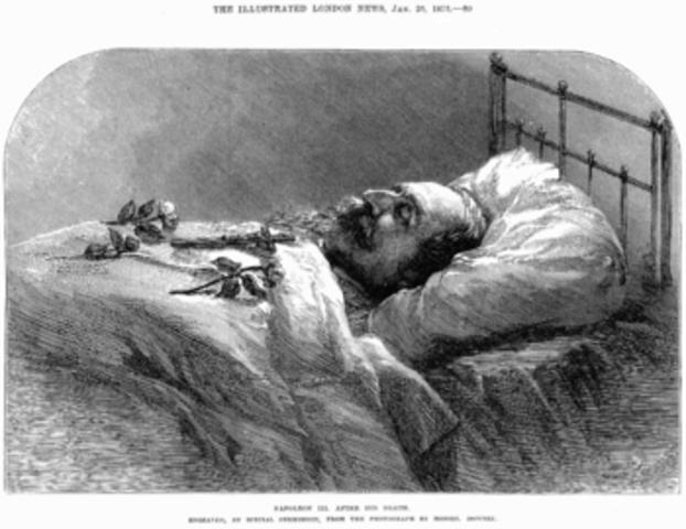 death of a bonaparte, a napolean bonaparte