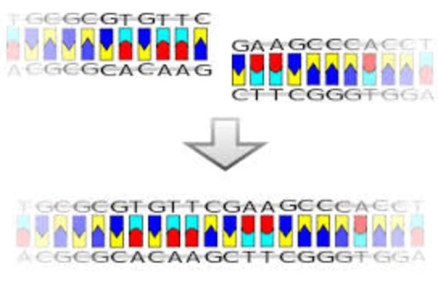 Fabricación del primer farmaco basado en tecnologia de ADN recombinante