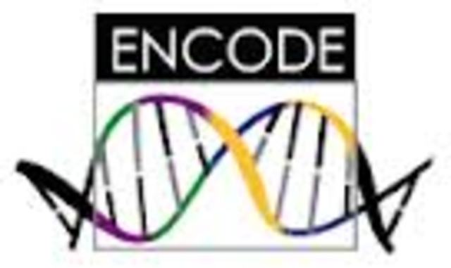 Se termina el Proyecto Piloto ENCODE (ENcilopedia of DNA Elements)