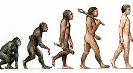 Scientific Contributions to a Theory of Evolution timeline