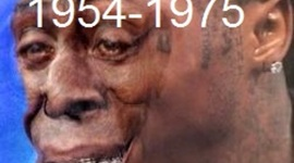1954-1975 Timeline APUSH by brianisjustaboutthesameamountofkwonasyouare