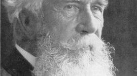 Stephen Jay Gould/Ernst Haeckel  timeline
