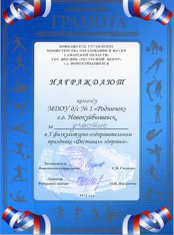 Достижения коллектива 2011 год