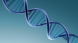 Proyecto genoma humano timeline