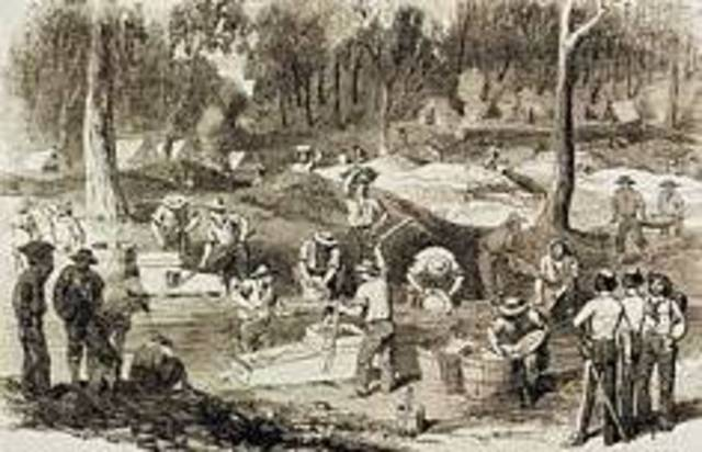 A history of the gold rush of the 1850s in the australian colonial history