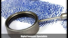 The History of Forensics timeline