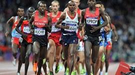 10000 meter run timeline