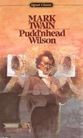 Pudd'nhead Wilson Summary