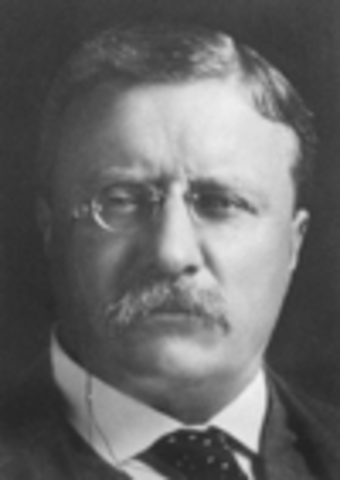 Theodore Roosevelt 26th