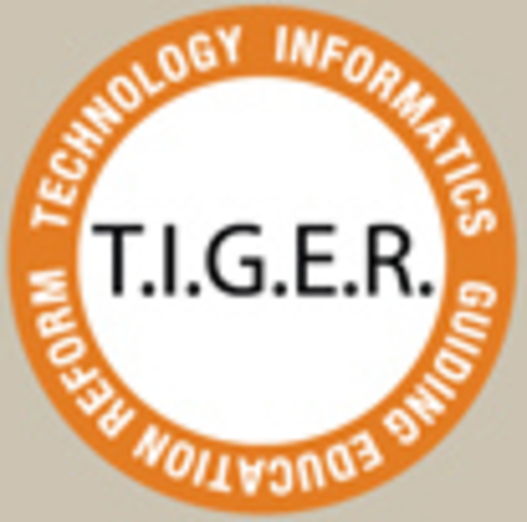 TIGER Informatics Competencies Collaborative (TICC) Final Report