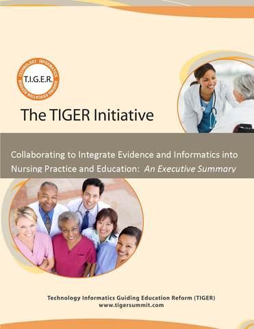 TIGER SUMMIT Evidence and Informati cs Transforming Nursing (Summary Report)