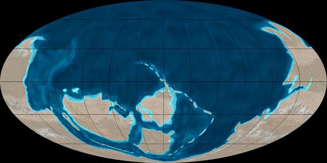 PERÍODO CÁMBRICO (570 a 500 millones de años)