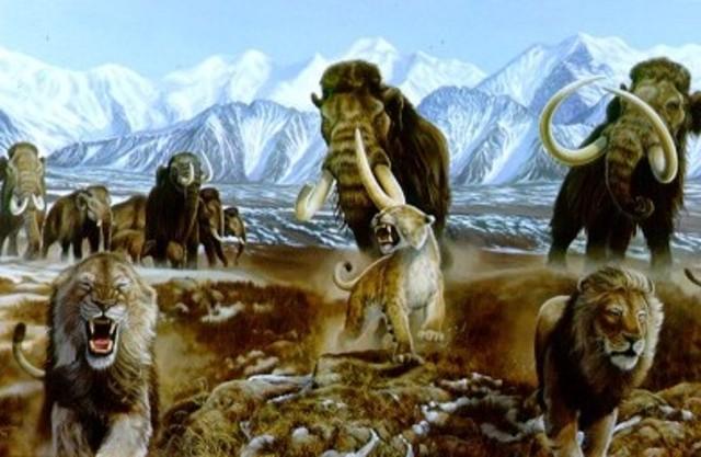 Cenozoico - Cuaternario - Plaistoceno (2 millones de años)