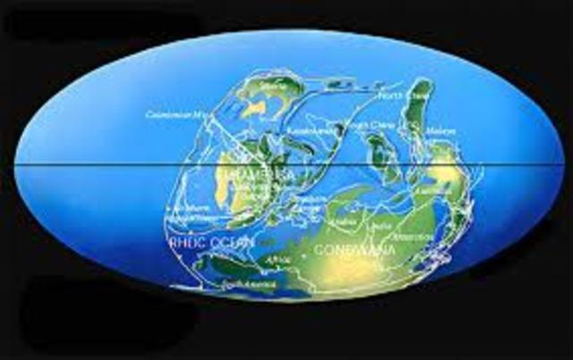 PERÍODO DEVÓNICO (395 a 345 millones de años)