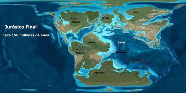 PERÍODO JURÁSICO (195 a 136 millones de años)