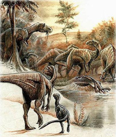 Mesozoico - Cretácico (144 millones de años)