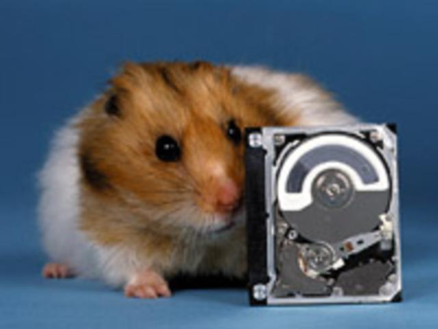 IBM выпускает Microdrive ёмкостью 170 и 340 Мб.