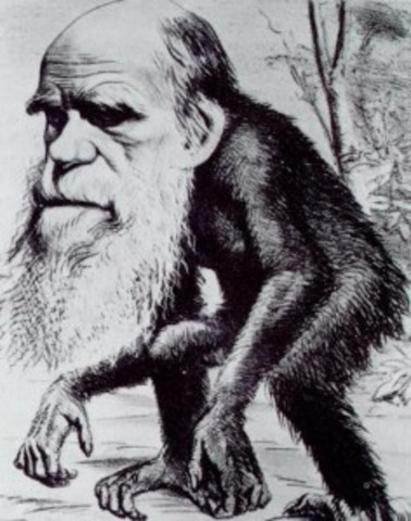 Darwin's Hypothesis