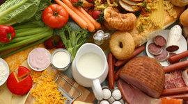 Food Biotechnology timeline