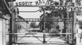 Auschwitz  timeline