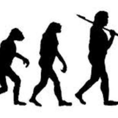 Sarah Habgood - Theory of Evolution timeline