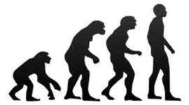 Development of Evolution Theory timeline