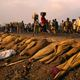 Refugees from rwanda in g 007