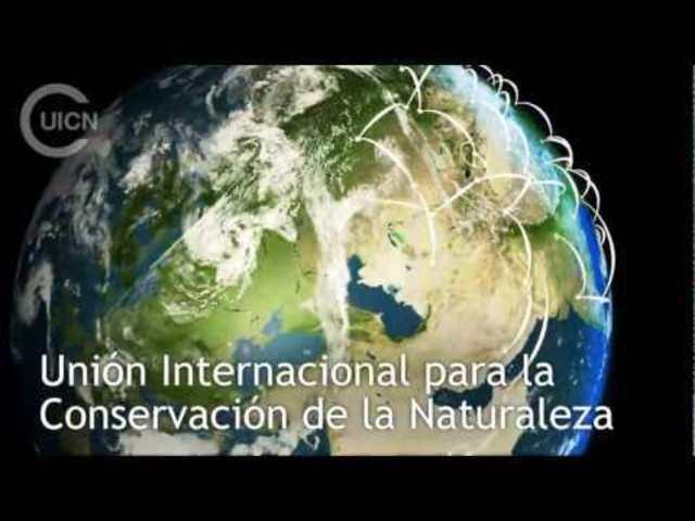 Unión Internacional para la Conservación de la Naturaleza y sus Recursos