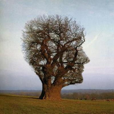 Historia de la Psicología Ambiental timeline