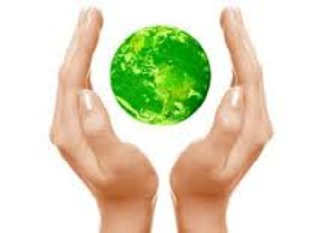 División del medio ambiente
