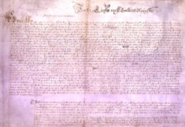 Peticion de derecho
