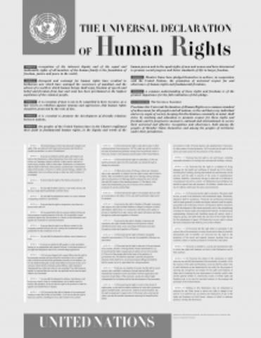 La Declaración Universal de los Derechos Humanos (1948)