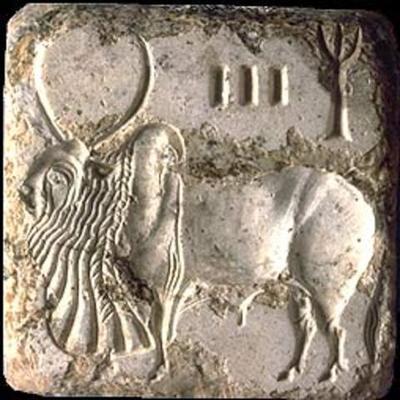 Magadha Kingdom timeline