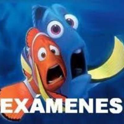 Examenes parciales timeline