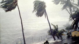 Hurricane and Tropical Storms  timeline